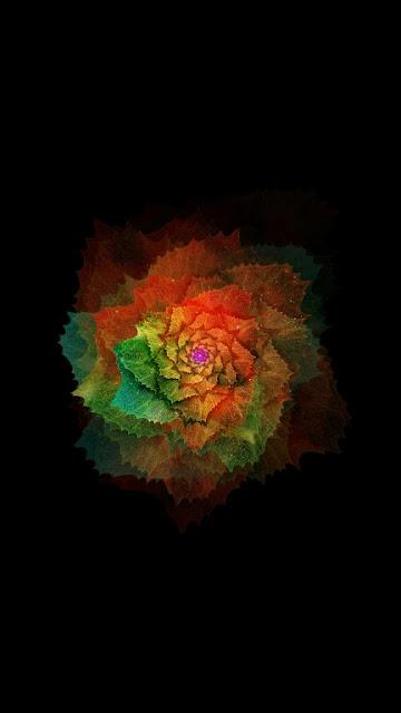 Beautiful Flower Oppo R9 Wallpapers