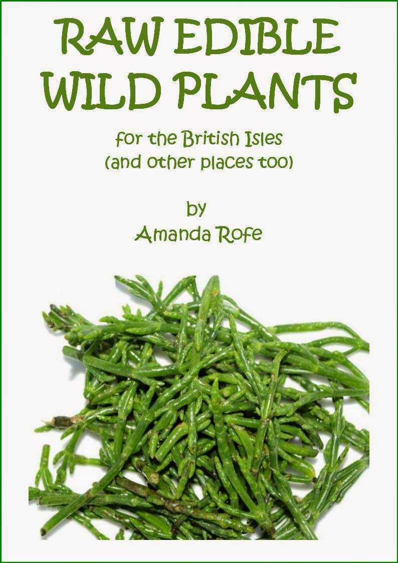 An image of the front cover of Raw Edible Wild Plants for the British Isles by Amanda Rofe