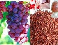 anggur ini biasa dipakai untuk menciptakan jus 7 manfaat buah anggur bagi tubuh