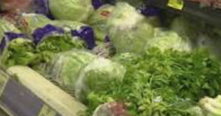 Lettuce Prices On The Rise As California's Wet Winter Prevents Planting