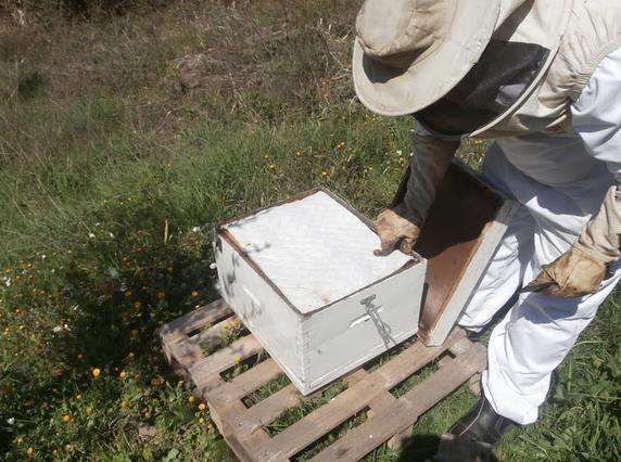 Προστασία με κοινό κηρόπανο και προστασία με κηρόπανο keroTherm (photos)