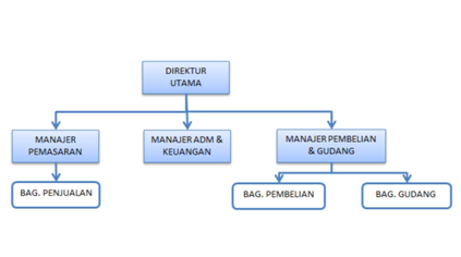 bentuk struktur organisasi badan usaha Struktur Organisasi Pemuda conyoh bagan struktur organisasi