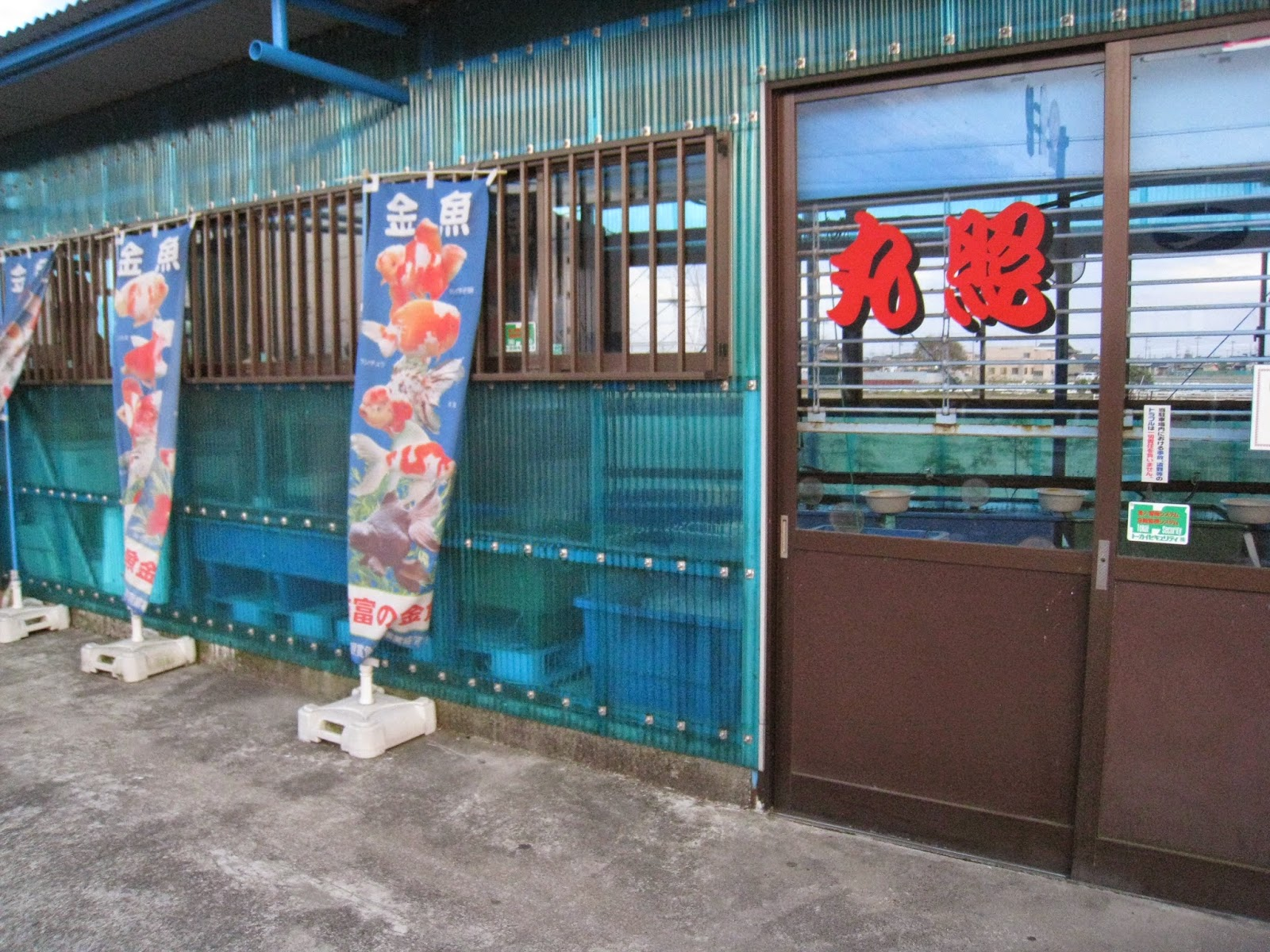 養魚 場 照 丸 丸照養魚場 弥富の金魚小売専門店