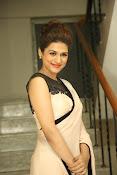 shraddha das latest glamorous photos-thumbnail-12