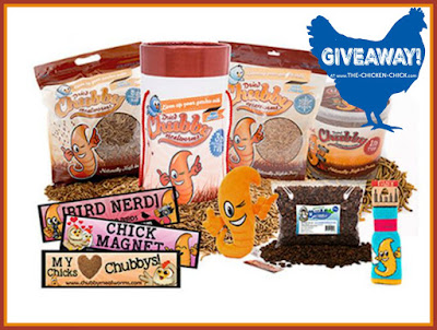 Chubby Mealworms Hen Party Prize Package Giveaway at www.The-Chicken-Chick.com