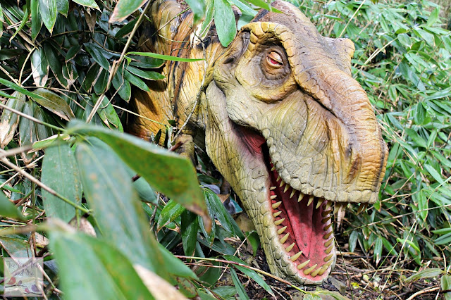 Wildlife and Dinosaur Park Devon - T rex