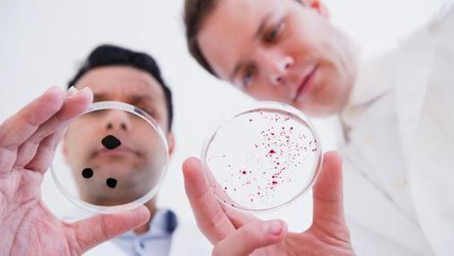 Penelitian terhadap kuman atau bakteri yang resisten terhadap antibiotik