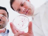 Mengapa Banyak Kuman yang Resisten Antibiotik ya?