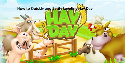 How to Quickly and Easily Leveling Hay Day