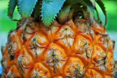 ternyata tidak kalah dgn buah lainnya menyerupai buah naga atau buah sirsak 27 Manfaat Buah Nanas untuk Kesehatan dan Kecantikan yg Harus Anda Ketahui