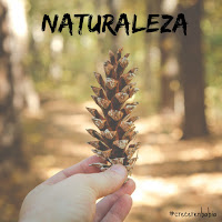 http://crecerenbabia.blogspot.com.es/search/label/actividades%20naturaleza