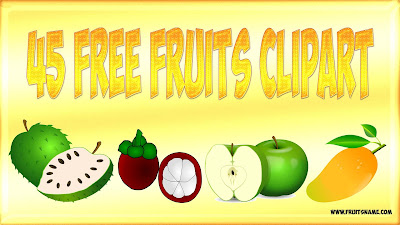 45 Free Fruits Clipart | Fruits Name