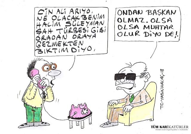 başkan erdoğan karikatürü
