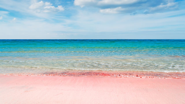pink-sands-beach-sable-rose