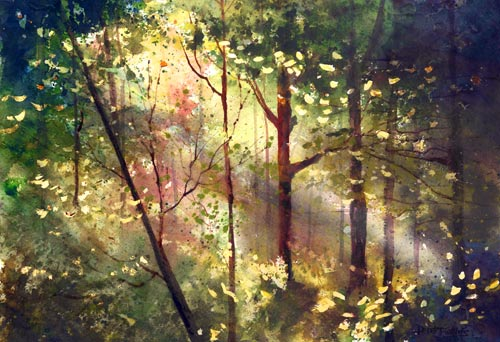watercolor painting of a light filled forest