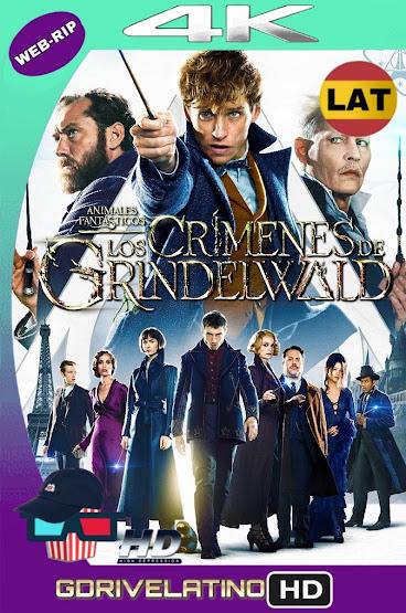 Animales Fantásticos: Los Crímenes de Grindelwald (2018) WEBRip 4K HDR Latino-Ingles MKV