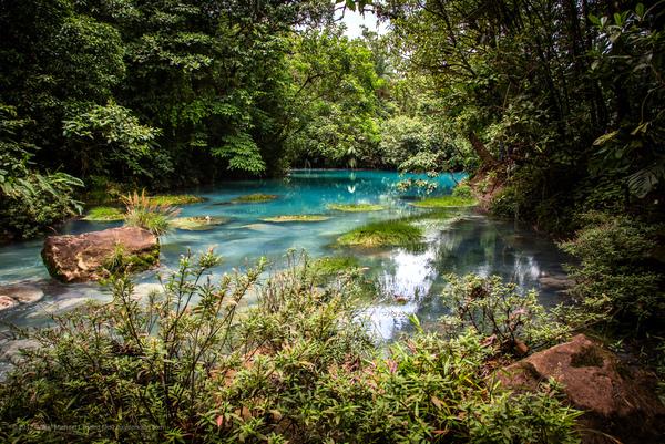 Río Celeste (Parque Nacional Volcán Tenorio, Costa Rica)