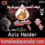 http://www.humaliwalayazadar.com/2015/10/aziz-haider-nohay-2016.html