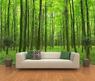 skog fototapet träd grön fondvägg 3d
