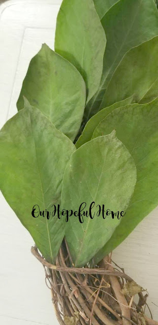 live magnolia leaves grapevine wreath form