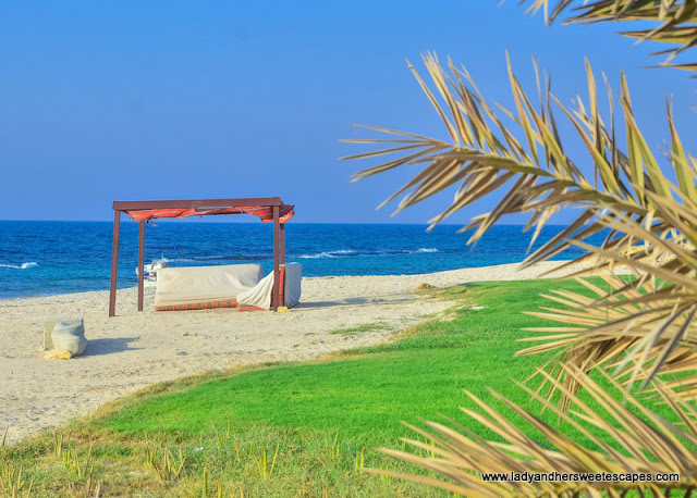 beach in Sir Bani Yas Island