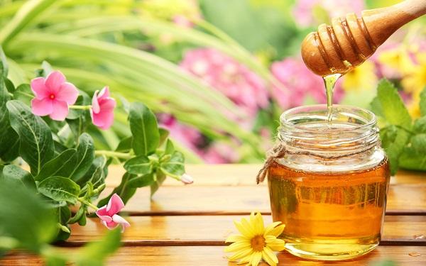 Mật ong có tính oxy hóa, giúp kích thích sản xuất collagen và elastin, làm đầy các hõm li ti bên trên bề mặt da