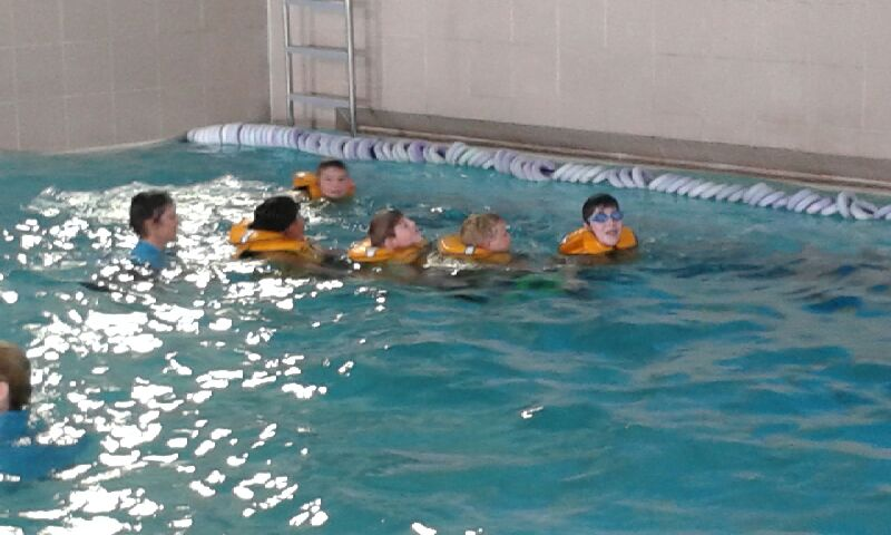 Hoiho 2017 Swimming Lessons