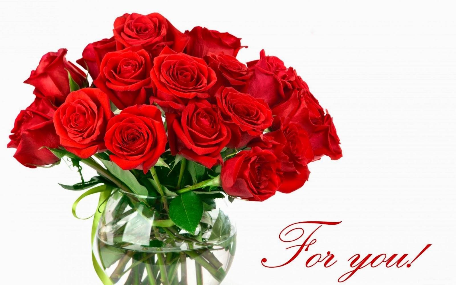وردة حمراء جميلة