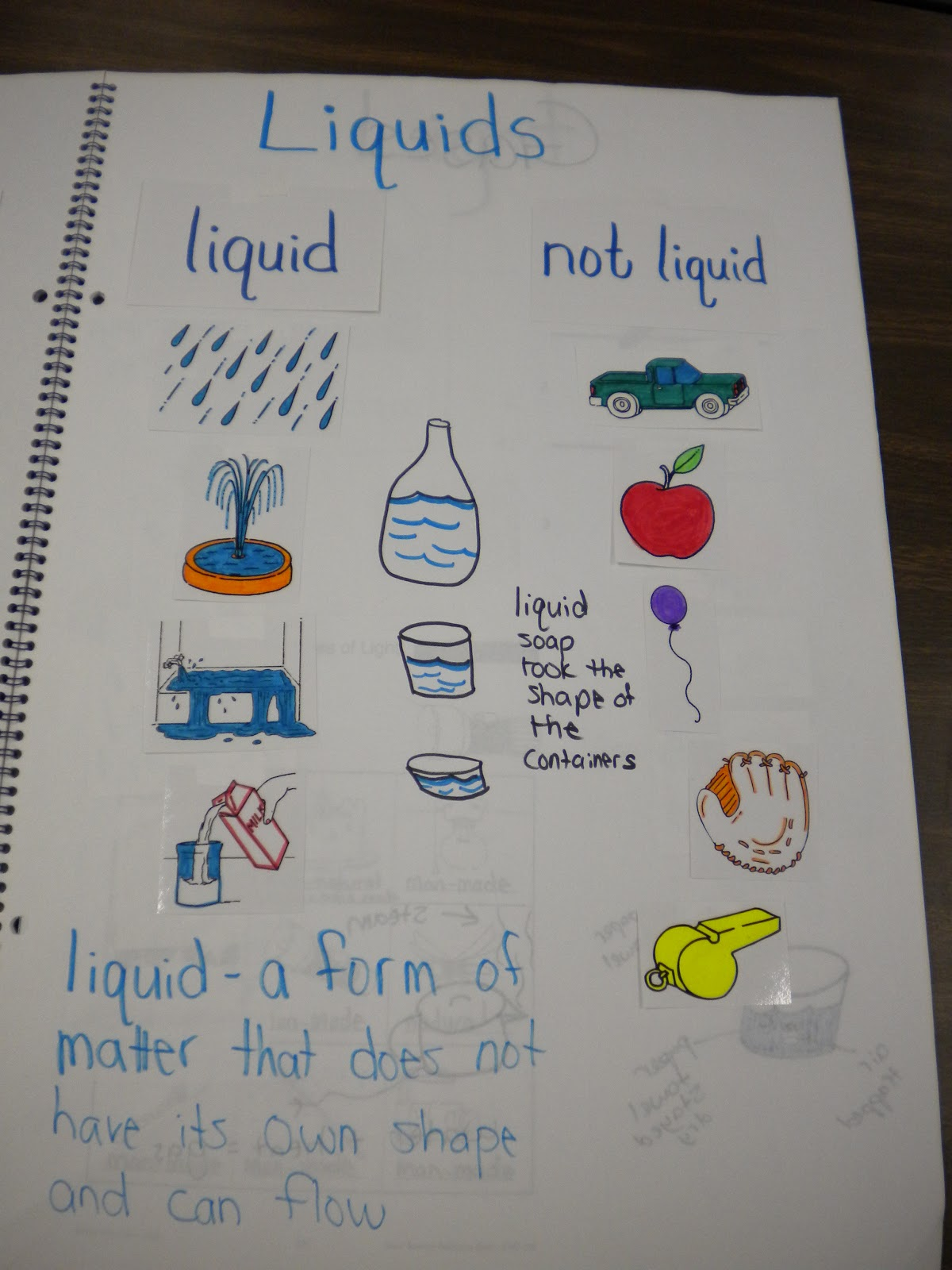 First Grade Randomness Large Class Science Journal