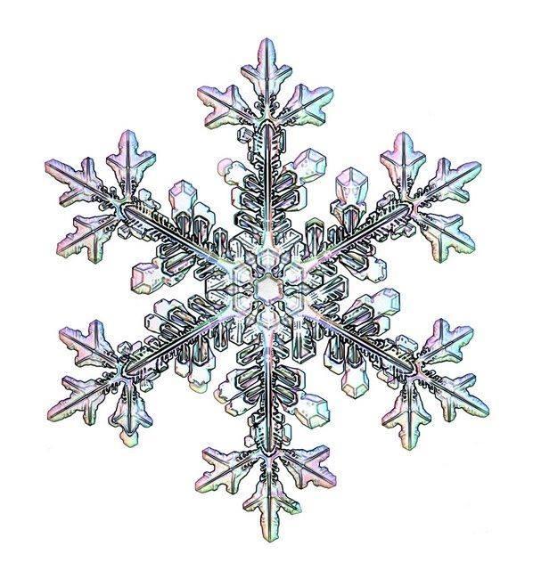 snowflake - photo #41