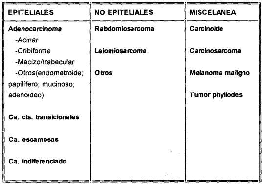 adenocarcinoma de prostata clasificacion