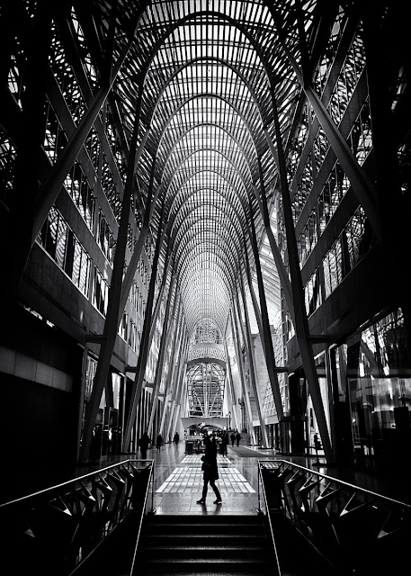 Allen Lambert Galleria Toronto Canada No 1 by The Learning Curve Photography