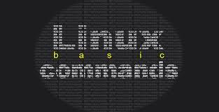 Perintah dasar linux untuk para pemula yang wajib diketahui