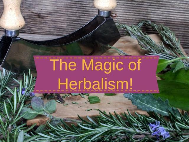 The magic of herbalism!