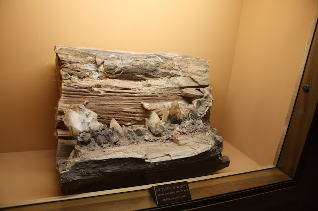 Petrified wood specimen at Lizzadro Museum of Lapidary Art in Elmhurst, IL