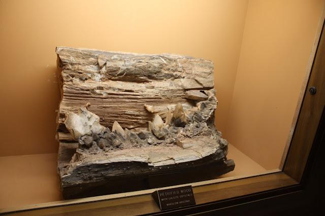 Petrified wood specimen at Lizzadro Museum of Lapidary Art in Elmhurst, IL