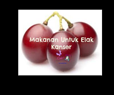 MAKANAN ELAK KANSER