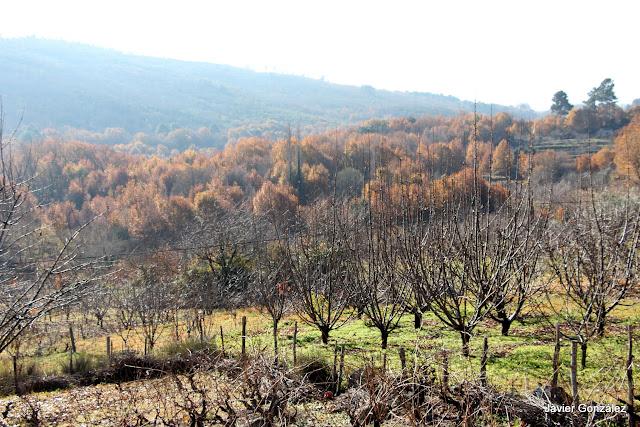 Valle de las Batuecas