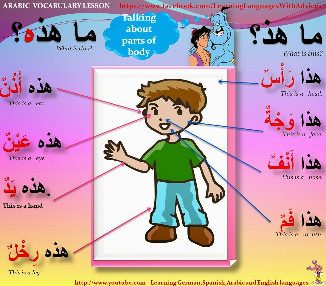 Learn Different Languages With Tips Body In Arabic