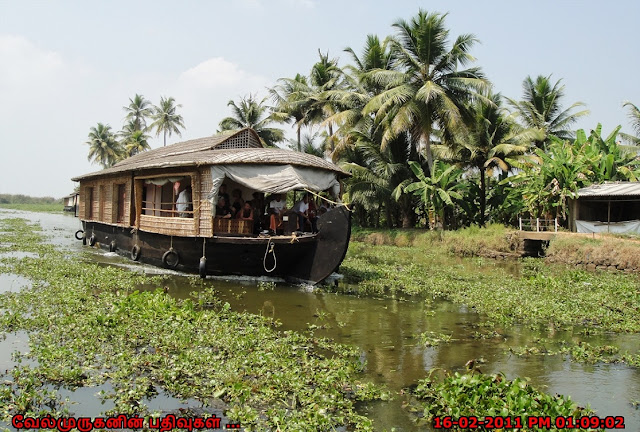 Kettuvalloms or Houseboats in Alleppey