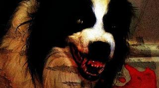 perro con sangre