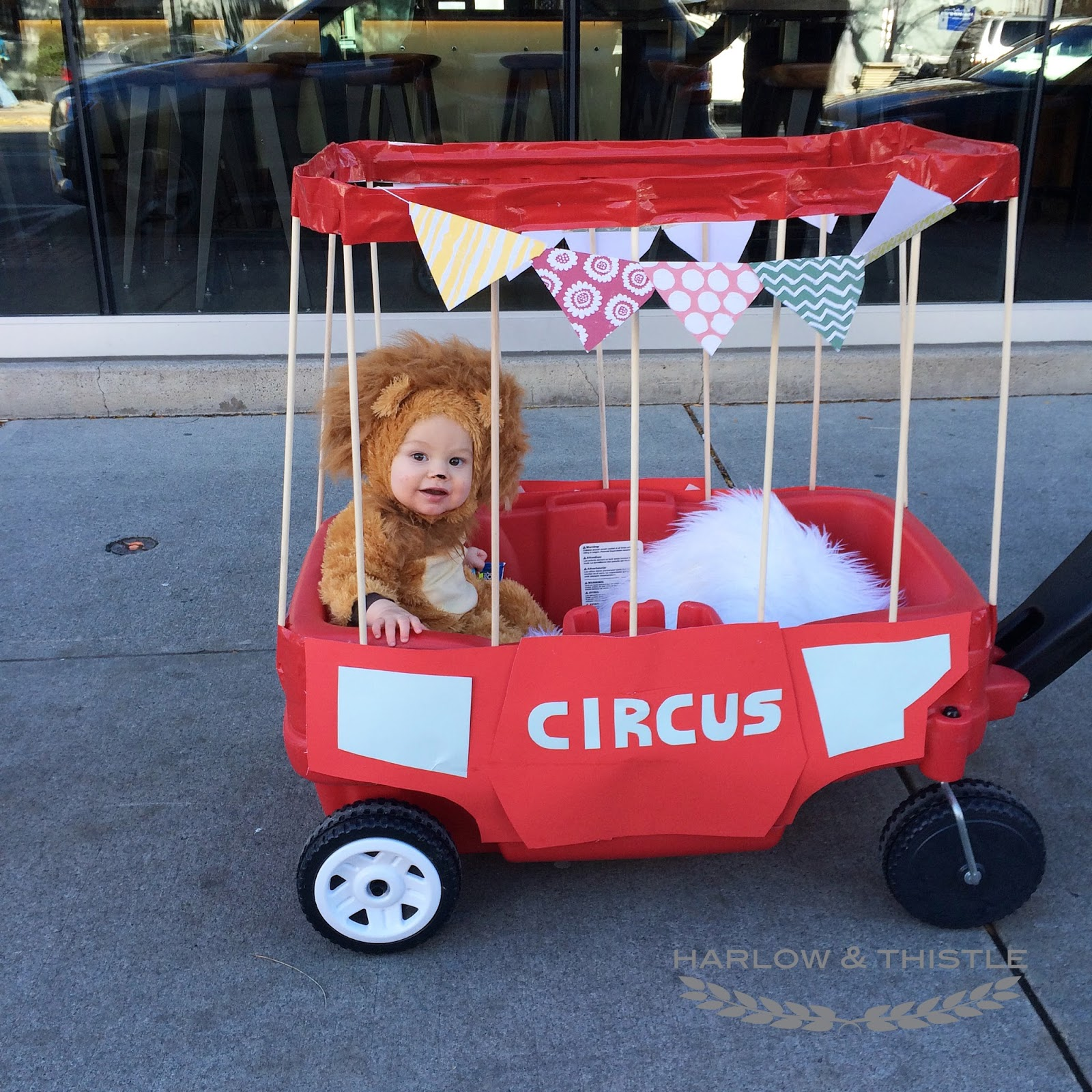 Home Depot Outdoor Decor Diy Halloween Baby Circus Lion Harlow Amp Thistle Home