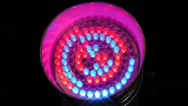 LED Light Bulbs: An Innovative Alternative to Traditional