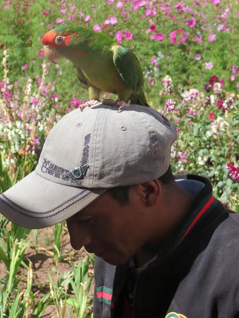 Besuch aus Cochabamba