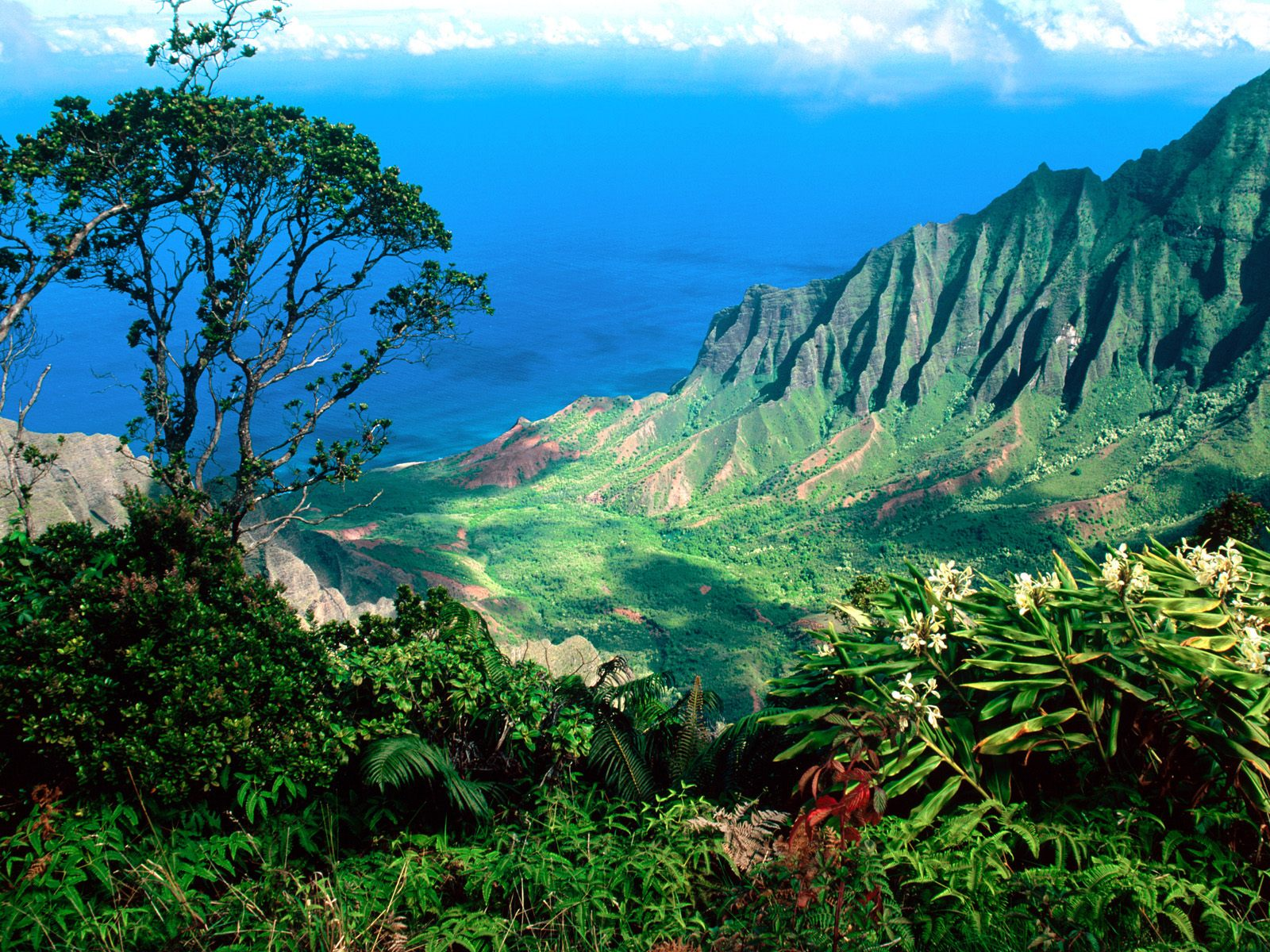 Tourism: Hawaii Island