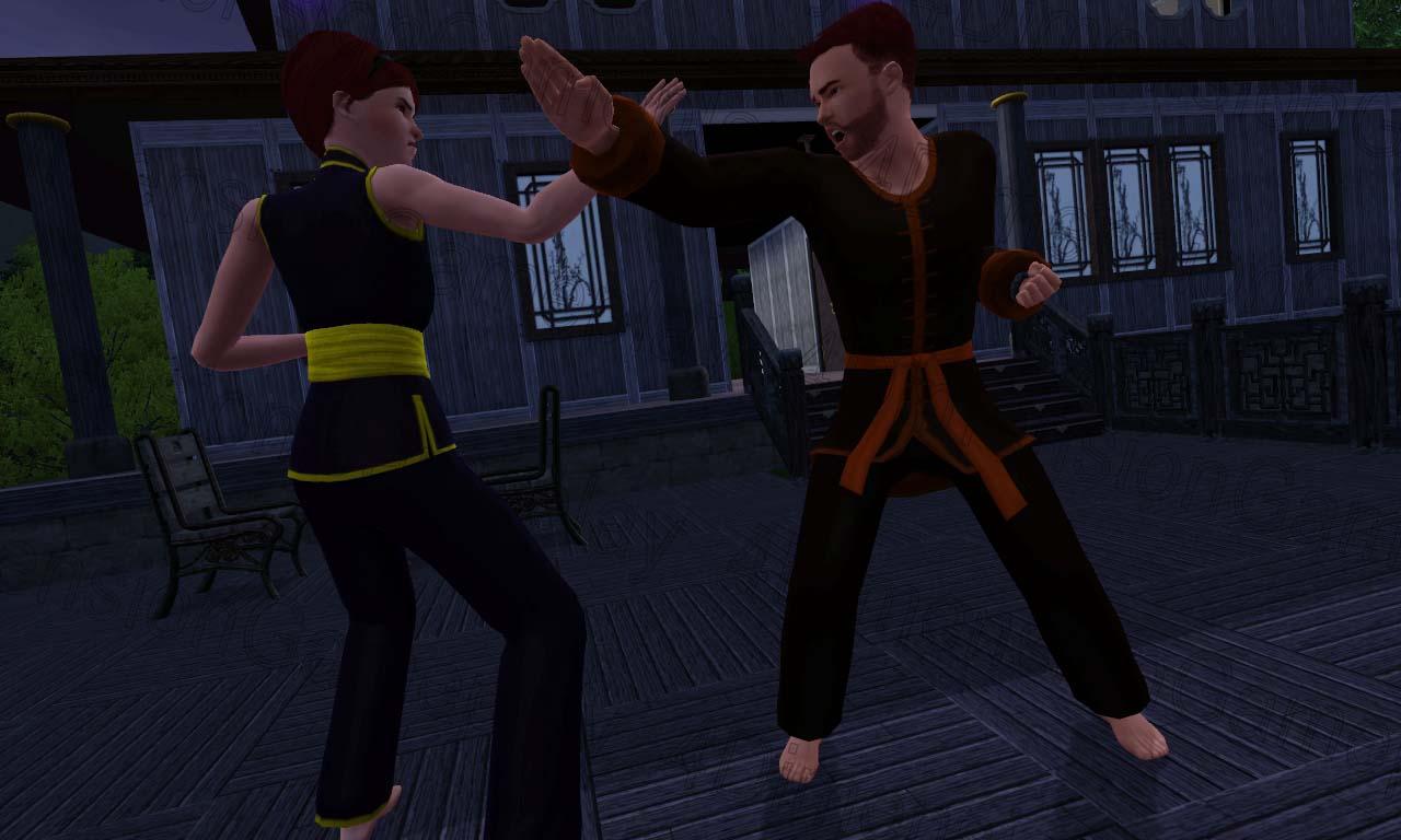 martial arts master sims 3 guide