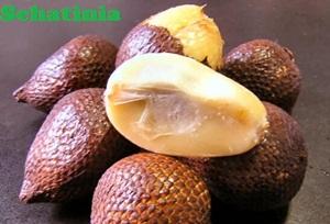 manfaat buah salak untuk kesehatan wanita