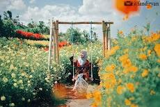 Resoinangun Garden, Kebun Bunga Warna Warni yang Memikat Hati