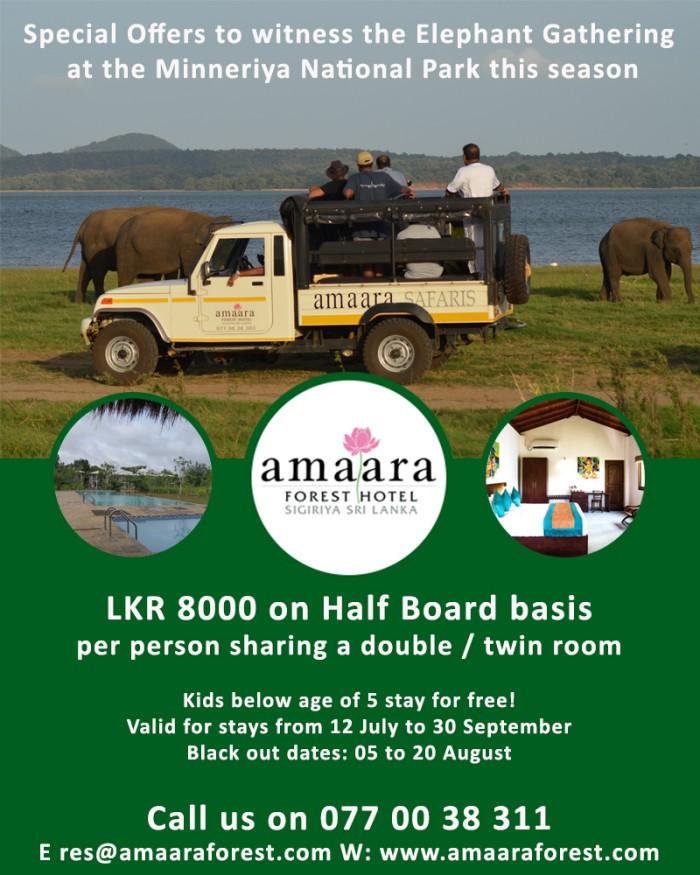 amaaraforest.com