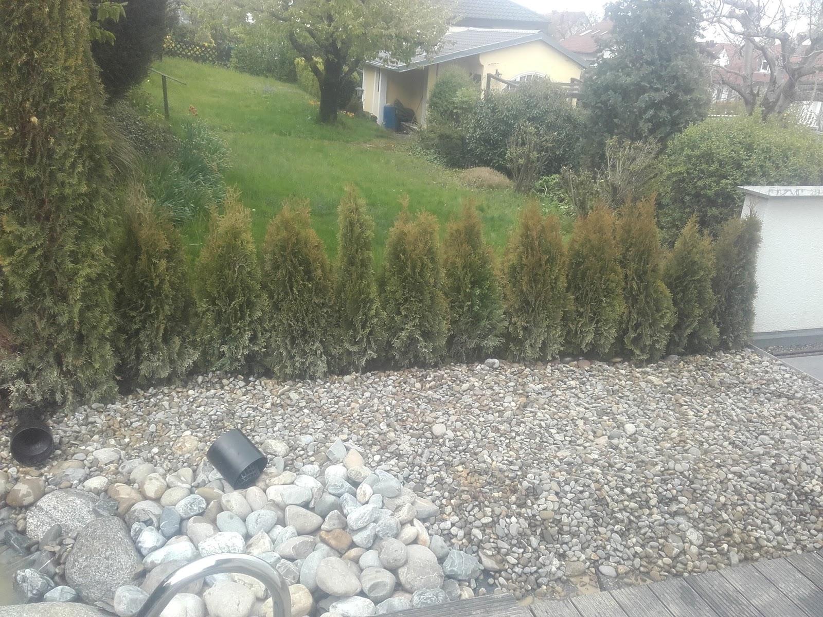 Inspirierend Garten Kies Design